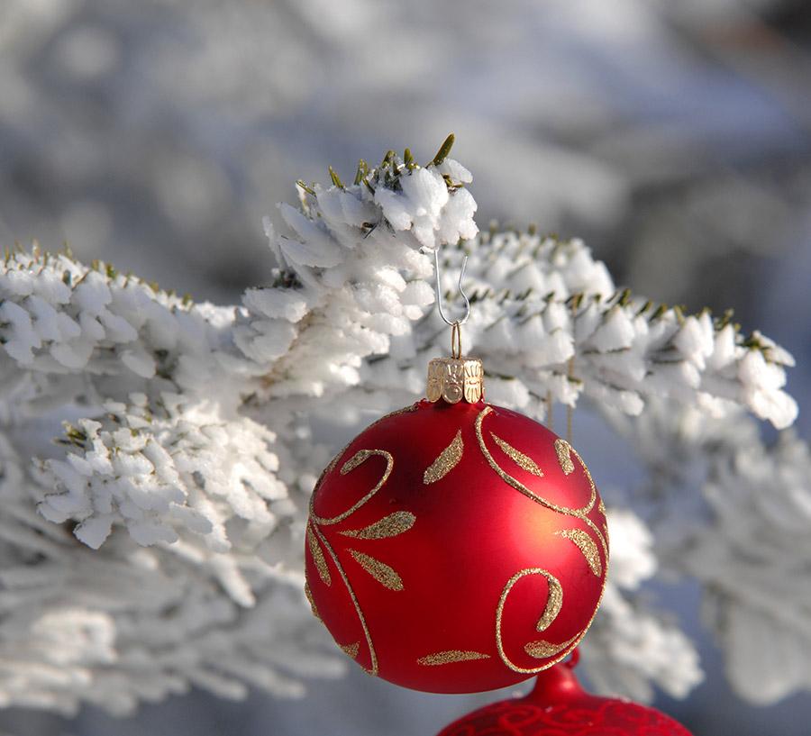 Weihnachten2020_steimen